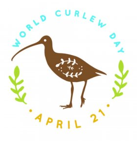 World Curlew Day logo